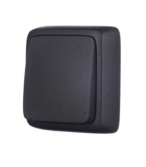 Выключатель HEGEL Alfa ВА10-113-08 одноклавишный открытая установка черный с изолирующей пластиной фото