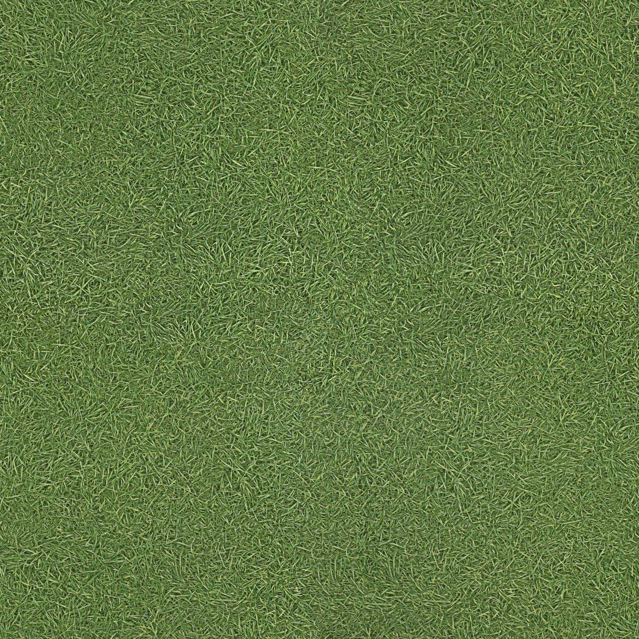 Линолеум IVC Vision Grass T25 полукоммерческий 3 м