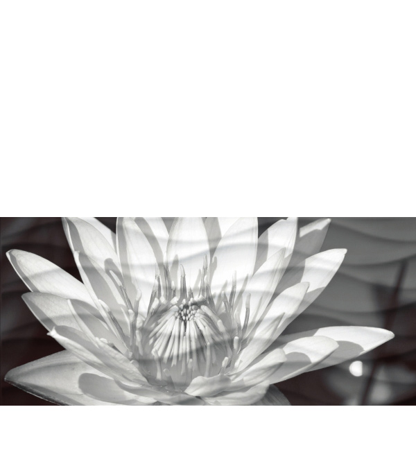 Плитка декор Wave Black Flowers 441 200х440х8.5 мм рельеф декор ibero black