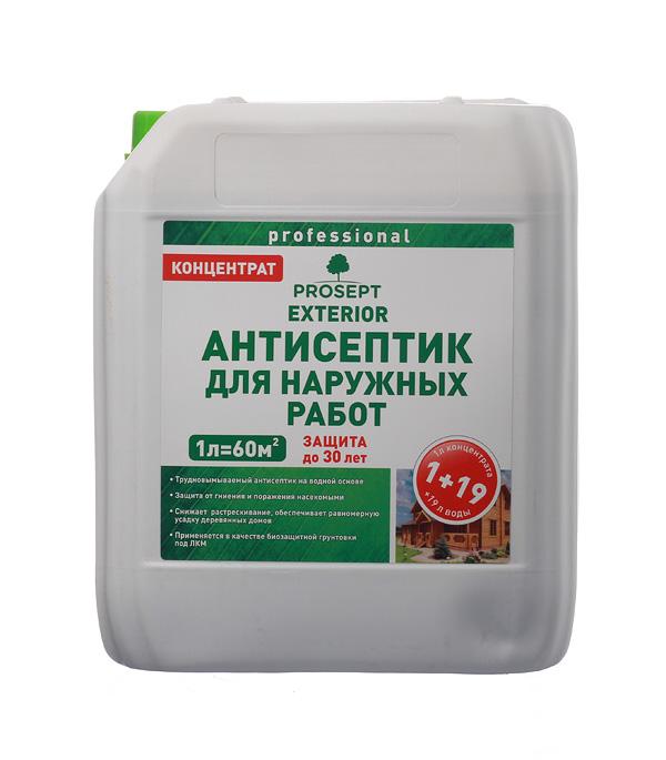 Антисептик Prosept Exterior для наружных работ концентрат 1:19 5 л антисептик prosept ultra невымываемый концентрат 5л