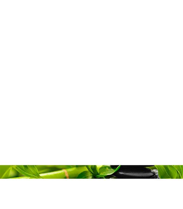 Фото - Плитка бордюр 400х30х8 мм Релакс зеленый 494301 бордюр ceramica classic tile magnolia 4 5x40