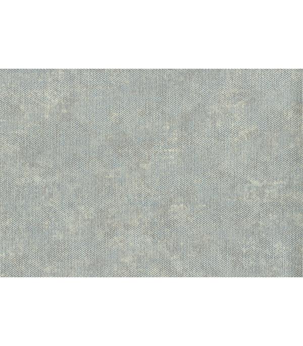Обои виниловые на флизелиновой основе 1,06х10 м, А.С.Креацион, Animal Planet арт.335321 шина continental premiumcontact 6 fr 235 50 r18 97v