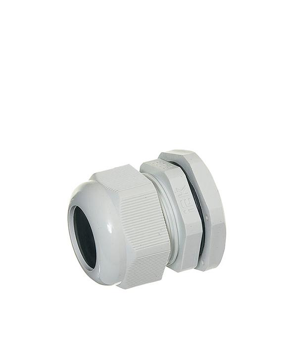 Сальник для ввода кабеля PG 29, d=18-24 мм