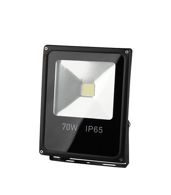 Прожектор cветодиодный  70 Вт, 6500K (холодный свет), ЭРА led прожектор эра ip65 30w 230v холодный свет