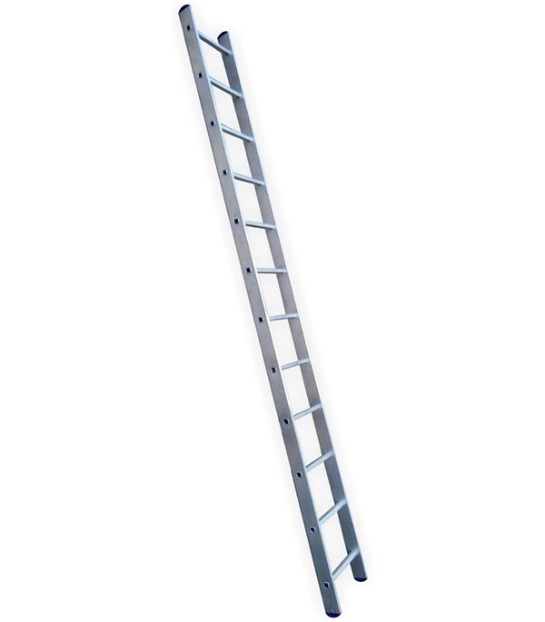 Лестница приставная 12 ступеней L112