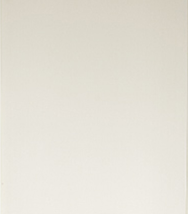 """Панель ПВХ белая матовая 250х3000х8 мм, Нордсайд от Строительный Торговый Дом """"Петрович"""""""