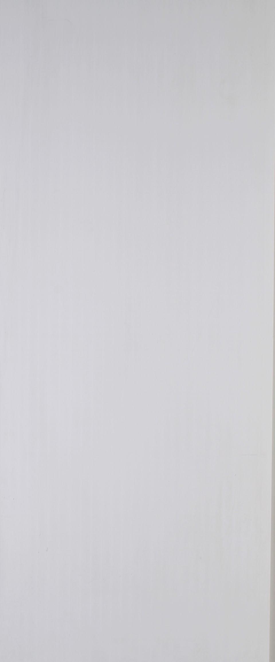 Панель ПВХ белая матовая 250х2700х8 мм