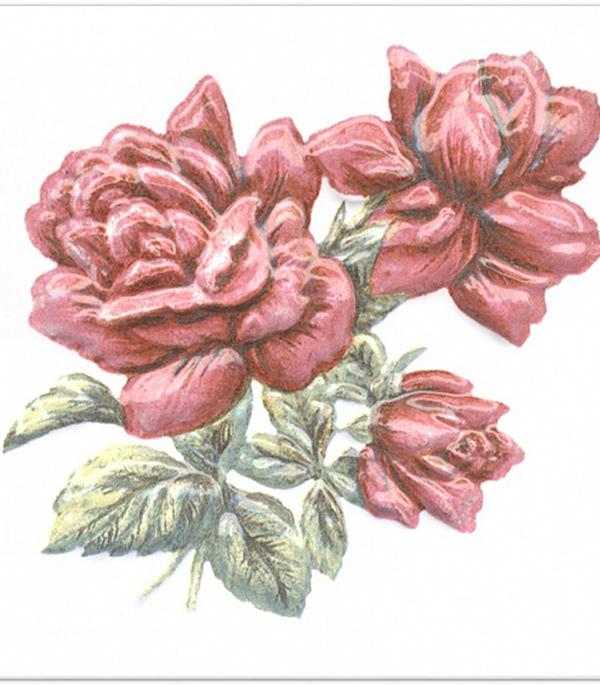 Плитка декор 99х99х7 мм Оранжерея Розы