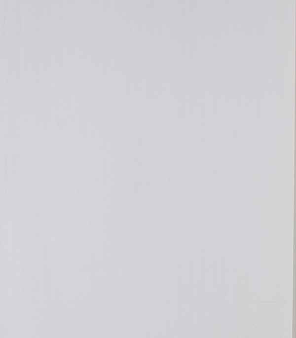 """Панель ПВХ белая матовая 250х3000х8 мм от Строительный Торговый Дом """"Петрович"""""""