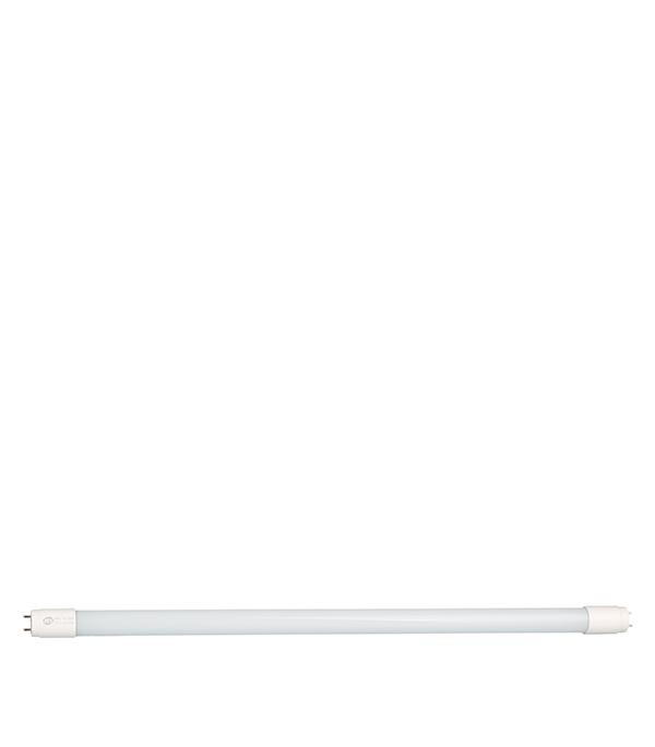 Лампа Т8 светодиодная 10W/6500К (холодный свет), d26, G13, 600 мм  светильник встраиваемый светодиодный тонкий круг 10w 6500 800lm холодный белый d 180mm цвет серый