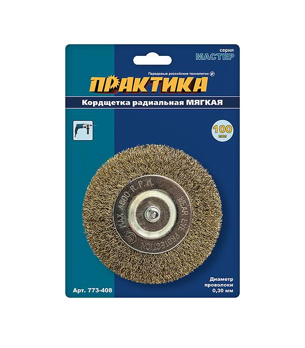 Кордщетка для дрели, (d6), радиальная мягкая, d= 100 мм, ПРАКТИКА