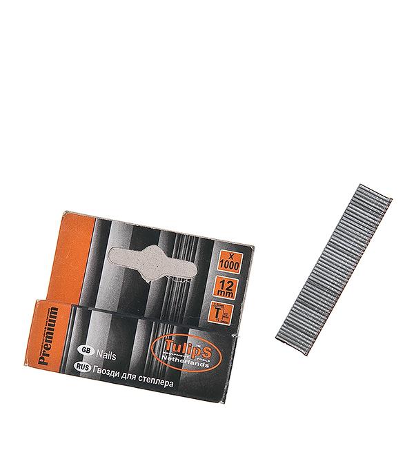 Гвозди для степлера 12 мм тип 300 (1000 шт) шпатель tulips tools im07 156
