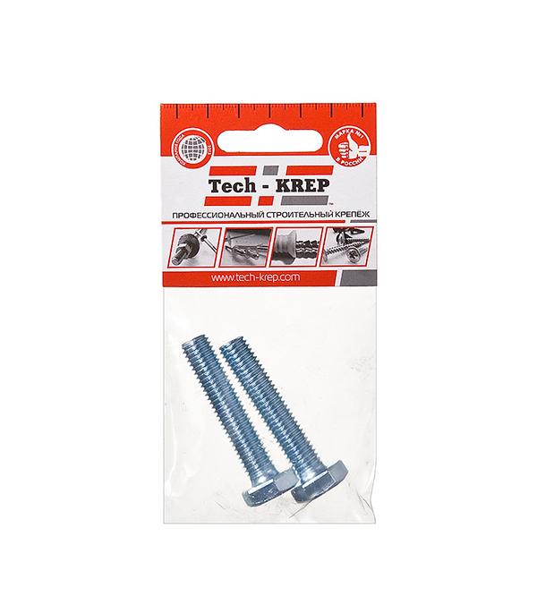 Болты оцинкованные М10х50 мм DIN 933 (2 шт)  цена и фото