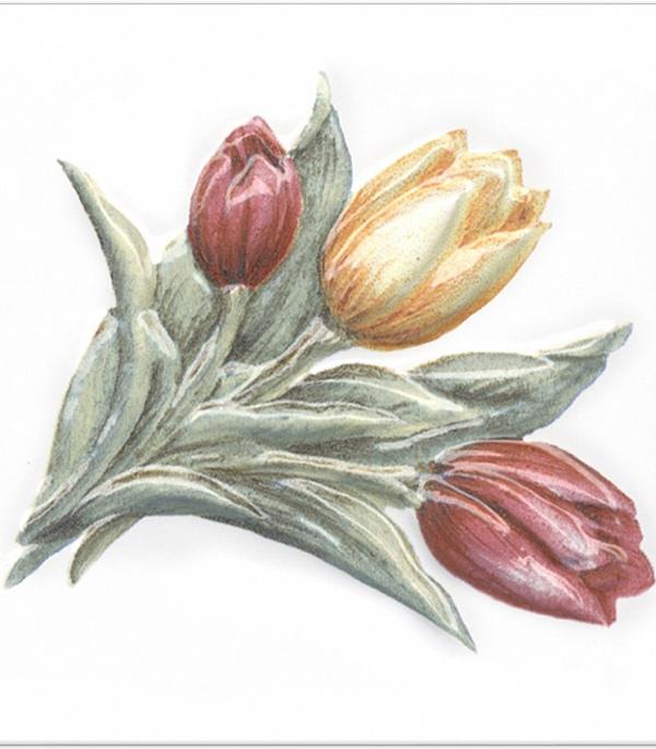 Плитка декор 99х99х7 мм Оранжерея Тюльпаны