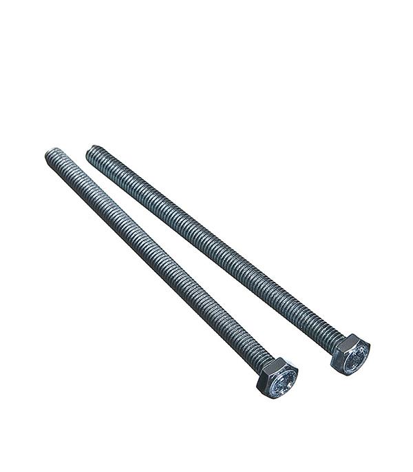 Болты оцинкованные  М6х100 мм DIN 933 (2 шт)