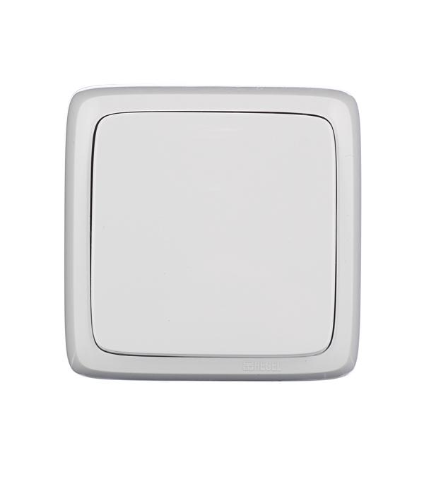Выключатель одноклавишный HEGEL Slim о/у белый цена и фото