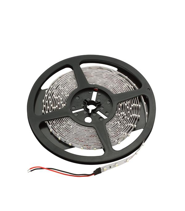 Лента светодиодная 60 LED/м, 4,8 Вт/м, 12В, IP20, холодный свет, 5 м, Jazzway