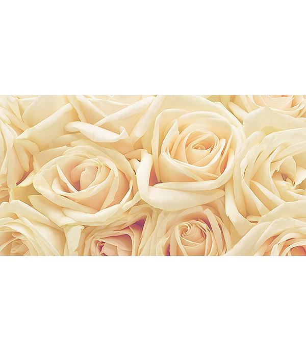 Фотообои 2,5х1,3 м 1 лист Розы арт. 230008 OVK Design